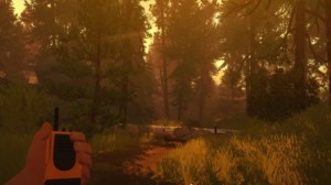 Firewatch-steam-keygen-2